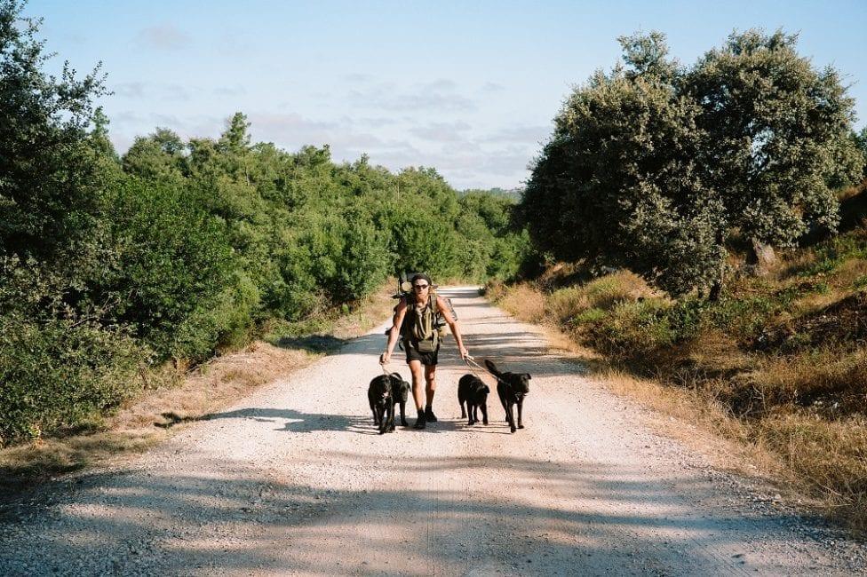 Edwin W. Moes/Gabriel ist seit dem 15. September 2015 auf Pilgerschaft. Bis heute hat er als Fußwanderer etwa 15.000 km hinter sich gebracht. Seit 2017 begleitete ihn sein erster Hund Guin, dann kam Chi, der Papa. Ihre beiden Söhne Noah und Logan wurden auf der Reise geboren. Vier schwarze Tiere und ein Wanderer. Das Pack, wie er sagt.